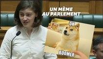 """""""ok boomer"""": chahutée, cette députée néo-zélandaise répond par un meme à la mode"""