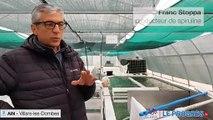 Franc Stoppa, à la tête de la ferme de production de spiruline à Villars-les-Dombes