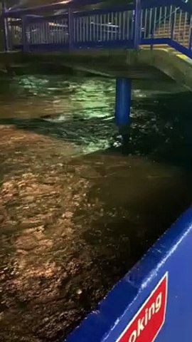 Sheffield Wednesday's Hillsborough stadium is close to flooding after torrential rain