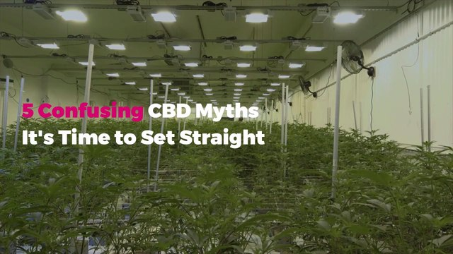 5 Confusing CBD Myths It's Time to Set Straight