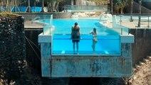 38 incredible pools to swim in before you die