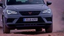 Cupra Ateca Limited Edition : présentation du SUV de 300 chevaux