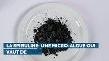 La spiruline: une micro-algue qui vaut de l'or