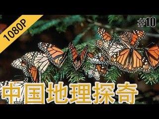 中国地理探奇10 蝴蝶谷的秘密