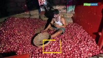 Explained | Why onion prices have skyrocketed