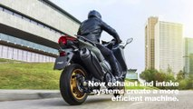 2020 Yamaha TMAX Tech MAX Preview
