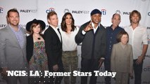 'NCIS: Los Angeles': Where Are These Former Cast Members Today?