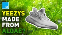 Kanye West unveils newest Yeezys made with algae