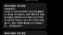 부산발 ITX 새마을호 멧돼지 충돌 1시간 운행 지연 / YTN