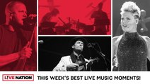 Video Gallery: Imagine Dragons, Pink, Louis The Child, Andrew Bird