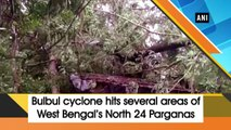 Bulbul cyclone hits several areas of West Bengal's North 24 Parganas