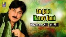 Shaman Ali Mirali New Sindhi Song - Aa Jald Haray Jani - Sindhi Popular Song