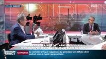 "L'interview ""Savoir comprendre"" : Nicolas Offenstadt - 11/11"