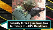 Security forces gun down two terrorists in J&K's Bandipora