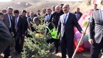 '11 Milyon Ağaç; Bugün Fidan, Yarın Nefes' Programı - KAYSERİ