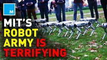MIT releases eerie video of their robot army training
