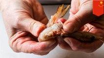 Jari terluka saat kupas udang, pria terinfeksi bakteri ganas - TomoNews