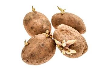 ¿Cómo evitar que a las patatas les salgan raíces?