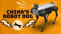 China has its own robot dog