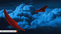 This 'Stingray' Spacecraft May One Day Explore Venus' Dark Side