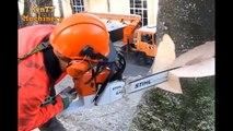 Amazing Easily Fastest Skill Felling Cutting Big Tree Chainsaw Turbo Machines Wood Working