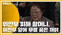 [자막뉴스] 위안부 피해 할머니, 재판부 앞에 무릎 꿇은 까닭 / YTN