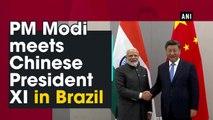 PM Modi meets Chinese President XI in Brazil