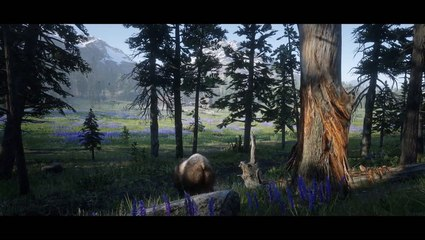 Red Dead Redemption 2: How it Plays on Different Graphics Cards