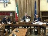 Roma - Meccanismo europeo di stabilità, audizione professor Galli (14.11.19)