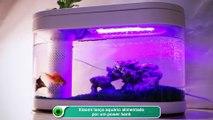 Xiaomi lança aquário alimentado por um power bank