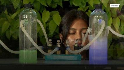 Fresh Air, for a price! Delhi bar sells oxygen to dodge air pollution