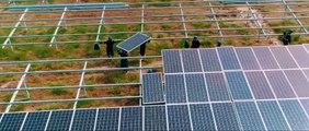 Conozca el Parque Solar más grande del país