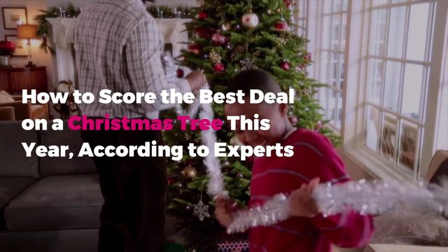 How to Score the Best Deal on a Christmas Tree This Year, According to Experts