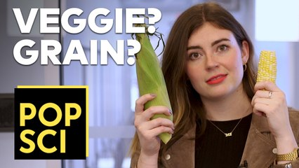 Is Corn a Fruit, Vegetable, or Grain?