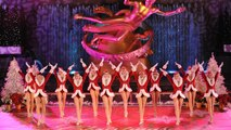 This NYC Hotel Will Put a Christmas Tree in Your Room and Get You in to See the Rockettes
