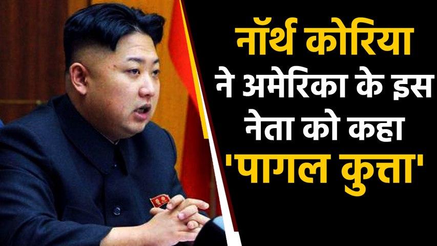 America के Former vice president को North Korea ने कहा 'पागल कुत्ता' । वनइंडिया हिंदी