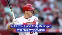The MLB MVP Awards