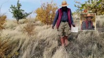 Yerli Robinson Crusoe Ziya Dede Adasında Kışa Hazırlanıyor