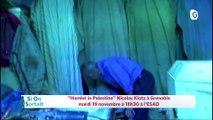 """18 NOVEMBRE 2019 - Nicolas Klotz """"Hamlet in Palestine"""", Réserve naturelle des hauts de Chartreuse...,  La noix de Grenoble une belle histoire"""