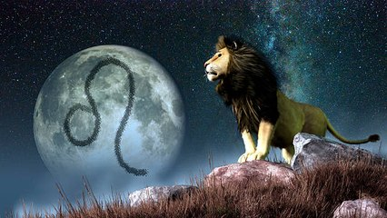 5 Vorzüge von Löwen