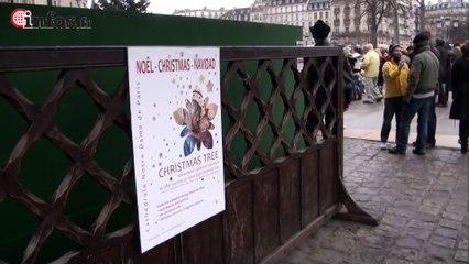 Noel à Notre Dame de Paris | Infos.fr