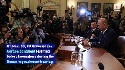 Gordon Sondland Makes A$AP Rocky Focal Point of Impeachment Hearing