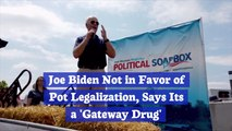 Joe Biden Says No To Cannabis