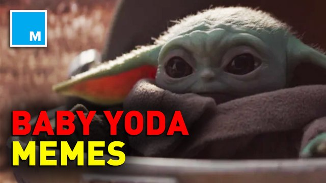 Baby Yoda is taking the internet by storm