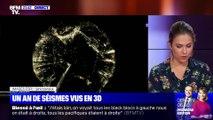 Un an de séismes vus en 3D - 19/11