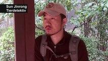 Mit Chinas Tierdetektiv auf Spurensuche