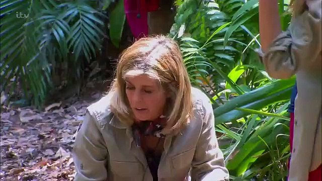 Im A Celebrity Get Me Out Of Here S19E03 November 19,2019