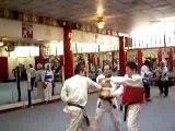 Tae Kwon Do Blue belt test