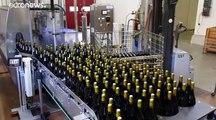 Le Beaujolais Nouveau arrive, les producteurs s'inquiètent