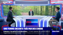 Aisne: une femme enceinte tuée par des chiens (2/2) - 20/11